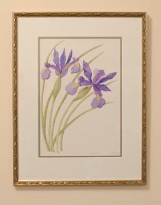 Dutch Iris (Framed)